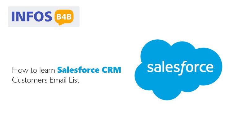 Salesforce CRM Users Email List